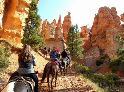 11 - Bryce Canon (ein Ritt durch den Canyon - toll!)