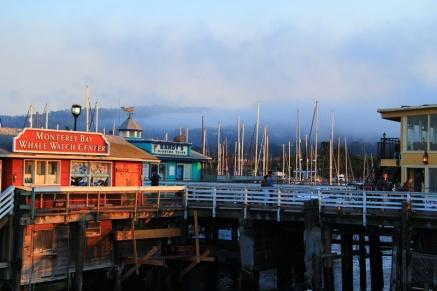 21 - Monterey