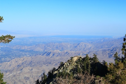 25 - Palm Springs (Aerial Tramway)