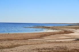 27 - Salton Sea (sehr bäh)