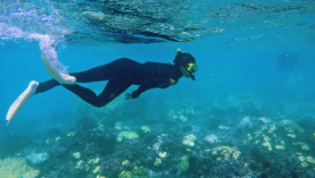 Great Barrier Reef - Angelina 2