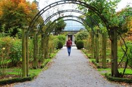 Christchurch - Botanical Garden 2