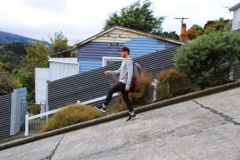 Dunedin - steilste Straße 2