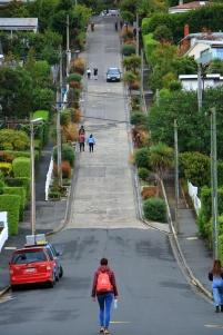 Dunedin - steilste Straße