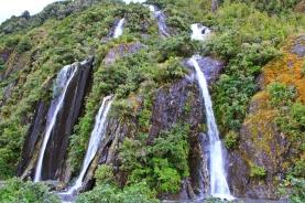 Franz Josef - Valley Walk 2