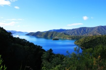 Marlborough Sound 5