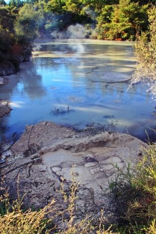 Wai-O-Tapu - Mud pools